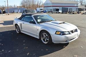 2004 Ford Mustang GT for sale #76830   MCG