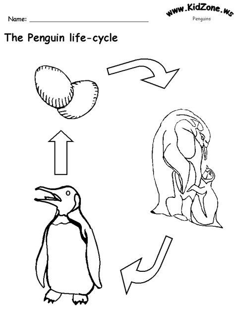 penguin life cycle worksheet  words