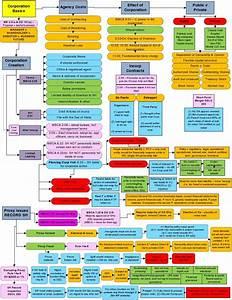 Business Associations Flowcharts