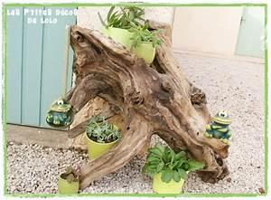 Arbre En Bois Deco : arbre plantes avec un bois flott photo de jardin ~ Premium-room.com Idées de Décoration
