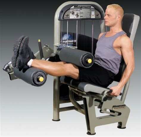 leg fitness exercises on equipment roman chair leg
