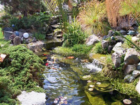 water garden design smalltowndjs