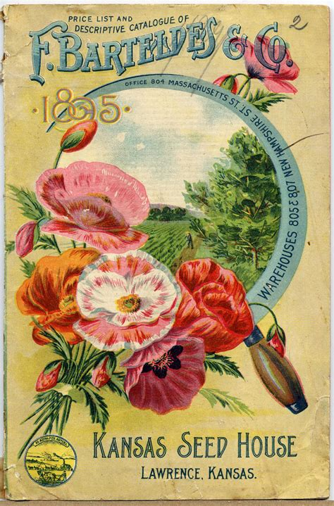 vintage pig clip art vintage seed catalog covers
