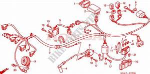 Diagram  Electrical Wiring Diagrams 124 Cm3 Atv For A