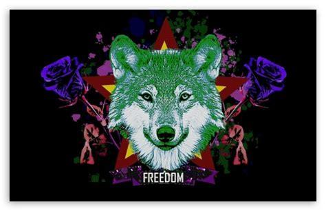 hipster wolf  hd desktop wallpaper   ultra hd tv