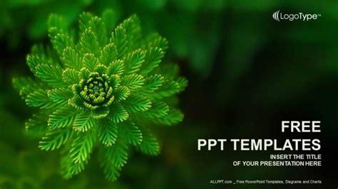 nature water plant powerpoint template designhooks