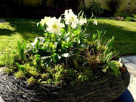 jardini 232 re d hiver le jardin par