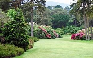 Garten Blumen Bilder : blumen bilder garten ~ Whattoseeinmadrid.com Haus und Dekorationen