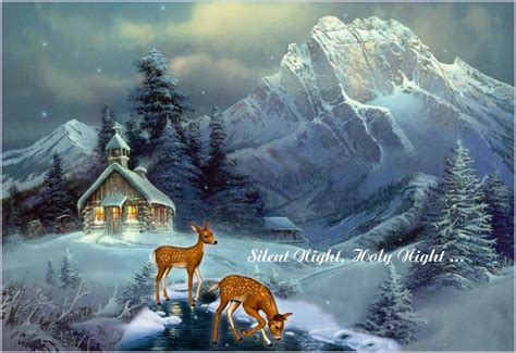 story  silent night cellebrate life