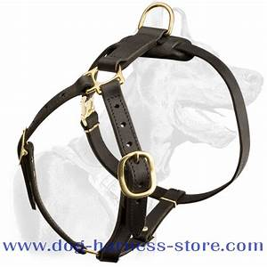 Luxury Handcrafted Leather Dog Harness For Tracking And