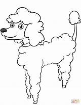 Coloring Poodle Cartoon Pages Printable Dogs Adult Template Drawing Paper Sketch Templates sketch template