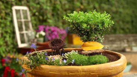 fairy garden video hgtv