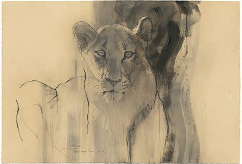 queen lioness drawing