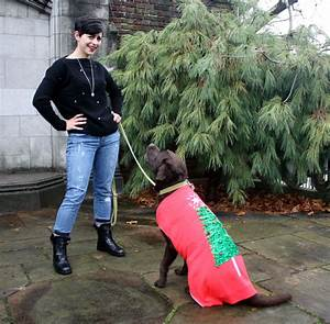 TGIF: It's an Ugly Sweater Pawty for Dogs!