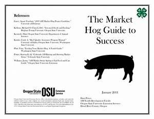 The Market Hog Guide To Success