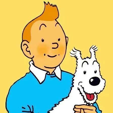 Tintin Et Milou  Tintin  Pinterest Tintin