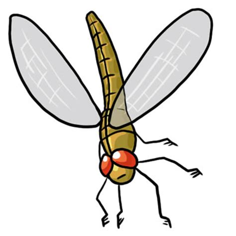 Free Dragonfly Clipart Pictures Clipartix Interiors Inside Ideas Interiors design about Everything [magnanprojects.com]