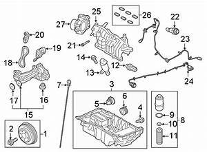 Ford Fusion Engine Timing Chain Guide Bolt  2 7 Liter