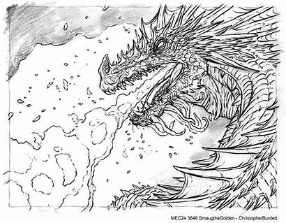 Coloring Hobbit Pages Smaug Colouring Adult Dragon