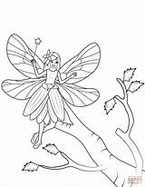 Wand Fairy Coloring Tree Pages Flies Printable Drawing Paper Dot sketch template
