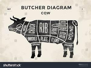Cut Beef Set Poster Butcher Diagram Stock Vector 365749532