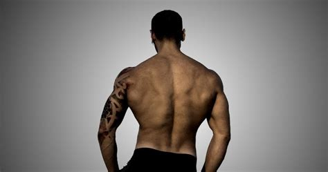 It's time to learn about the last two back muscles, the trapezius and rhomboideus. The Best Upper Back Exercises for Complete Back Development
