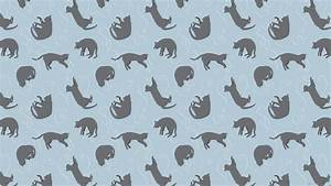 Cat Background Pattern Tumblr Blue 2560x1440 Cats - Litle Pups