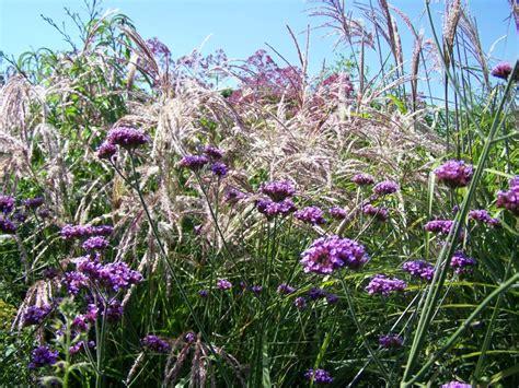 jardin plume giverny news