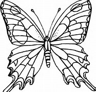 HD Wallpapers Coloring Page Butterfly Net Cmobilehdmobileigq
