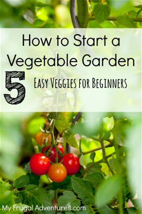 easy vegetable garden vegetable garden plans easy