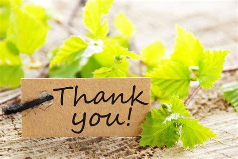 Image result for Thank you images