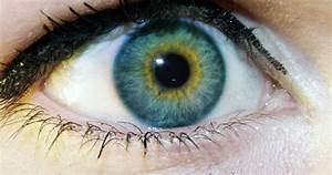 1000+ images about Heterochromia on Pinterest | Different ...