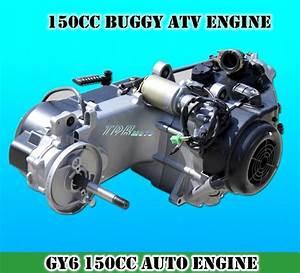 Gy6 150cc Fully Auto Reverse Gear Engine   Wiring Loom
