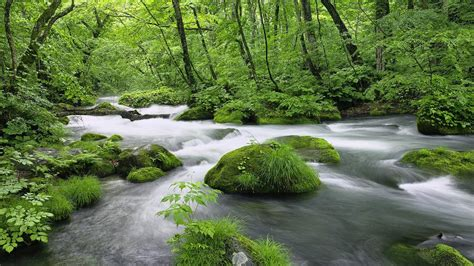 Latest Full Hd Size Nature Wallpapers Free Downloads