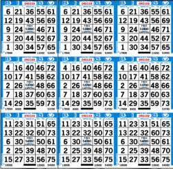 Paper Bingo Sheets