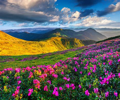 Scenic Mountain Hd Pc Wallpapers 5739