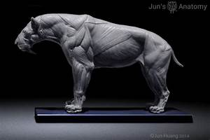Smilodon Populator model, 1/6th scale - flesh ...