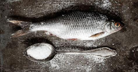 cuisiner le sandre quelle est la méthode de conservation du sandre