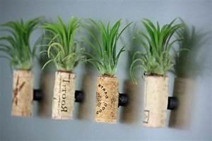 Pflanzen An Der Wand : basteln mit korken neue interessante vorschl ge ~ Markanthonyermac.com Haus und Dekorationen
