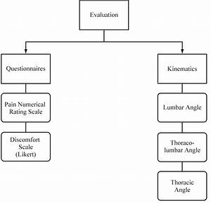 Assessment Of Changes In Spine Curvatures And The