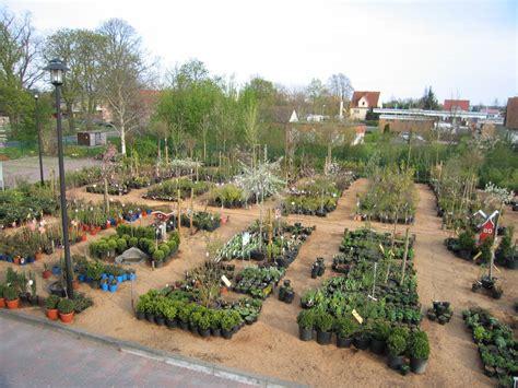 Garten Und Landschaftsbau Usedom by Pflanzen Kaufen Gartenbaumschule Baumschule Gartenwelt