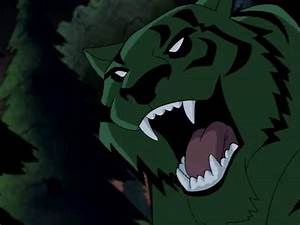 Beast Boy Tiger - Teen Titans Picture
