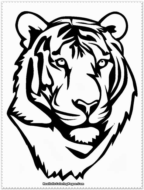 white tiger head printables - Google Search | Tiger Cake | Cute coloring pages, Coloring pages