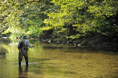 Cast your line in one of these great West Virginia fly ...