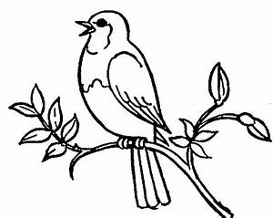 Bird Clipart Black And White #43596