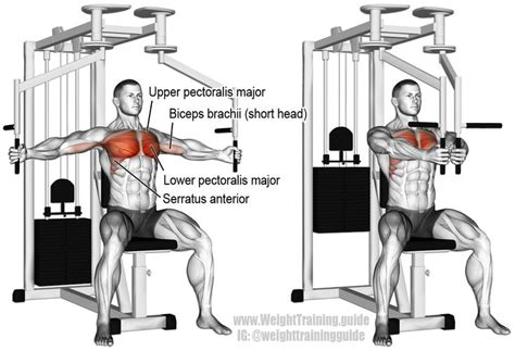 17 best ideas about pec workouts on pinterest good chest