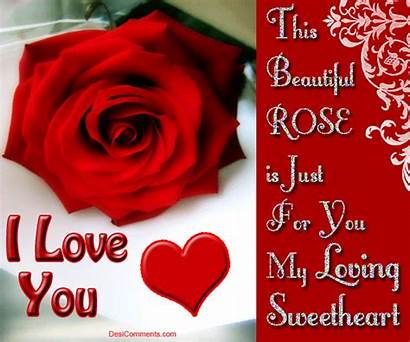 Rose Quotes Happy Sweetheart Loving Wife Valentine
