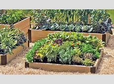 A Guide to Raised Beds, Gardening in Raised Beds, Square