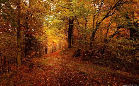 Autumn Lock Screen Wallpapers by Autumn Desktop Wallpaper 183 Free Stunning Hd