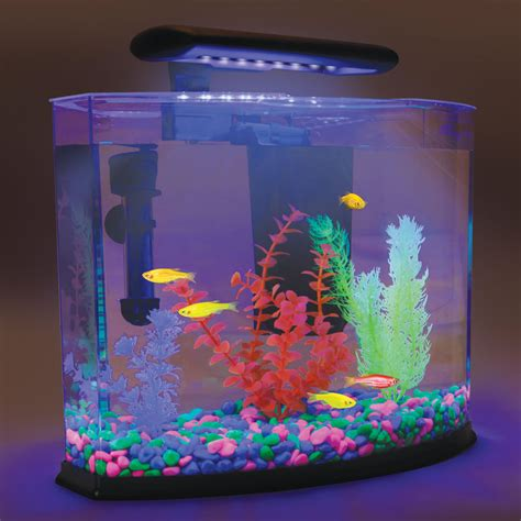 5 gallon glo fish neon aquarium heater gravel plants led light filter included ebay